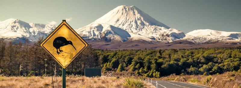 Новая Зеландия дешевые авиабилеты