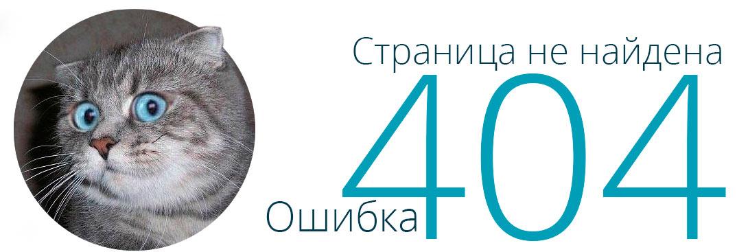 BudgetWorld страница 404